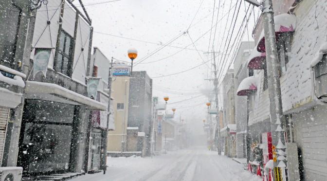 西日本各地で記録的豪雪、大きな影響-1月24日