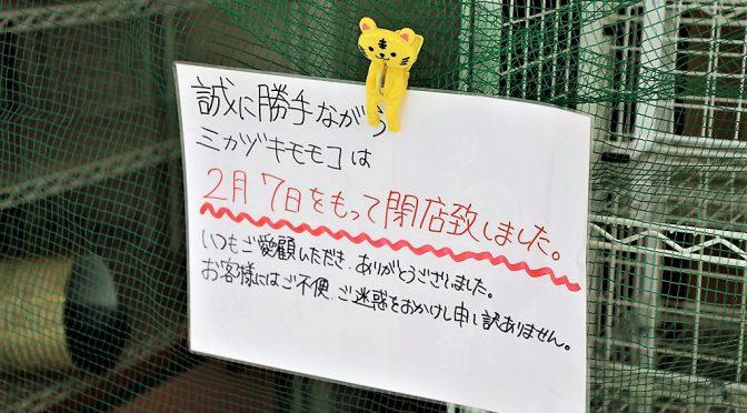 ミカヅキモモコ、2021年2月7日全店閉店-運営会社の三日月百子、新型コロナで倒産・破産申請へ